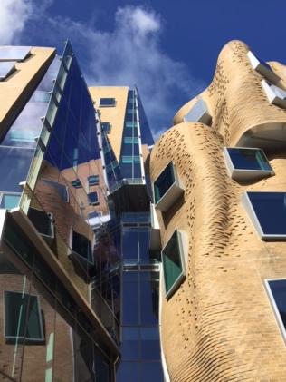 Ontworpen door Frank Gehry.